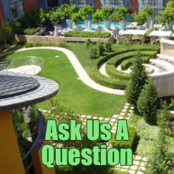 Ask Us A Question - Simpson Landscape