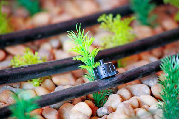 slm-drip-irrigation-003-edit