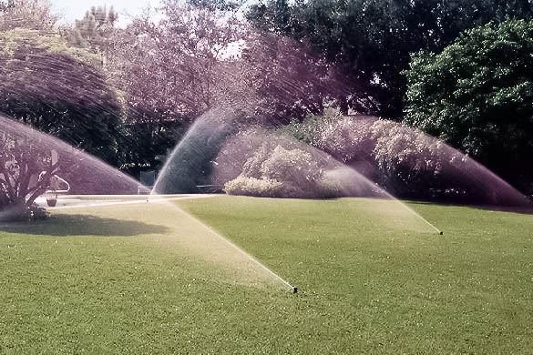 slm-irrigation-systems-005-edit