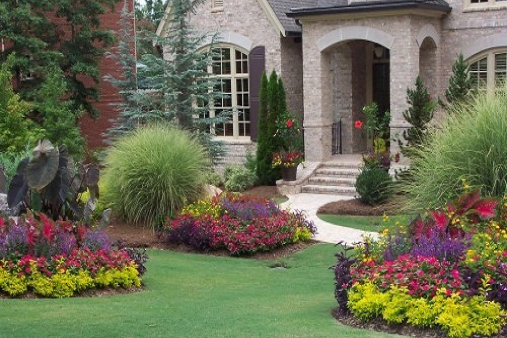 residential landscaping  simpson landscape, Natural flower