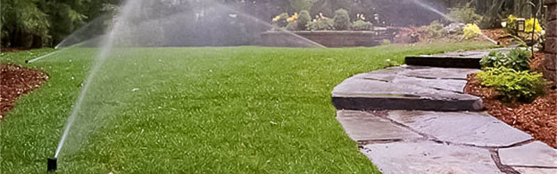 Can Irrigation Efficiency Really Save On Your Budget?