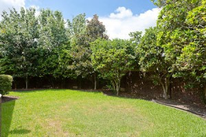 Selection & Planting - Simpson Landscape