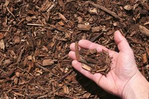 Shredded Bark Mulch