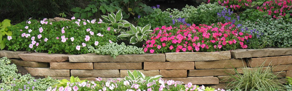 Put Your Waterlogged Worries to Bed with these Effective Landscaping Drainage Solutions